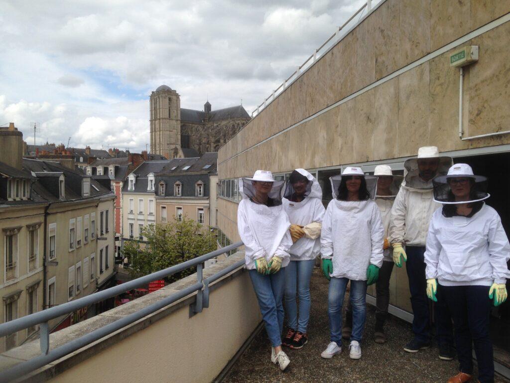 Animation apiculture abeille