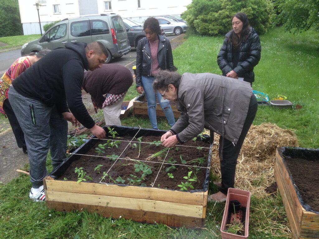 Jardins partagés association Jardin du Vivant le mans
